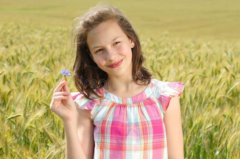 Download Junges Schönes Mädchen Auf Einem Gebiet Des Weizens Stockfoto - Bild von fashion, frech: 26351870