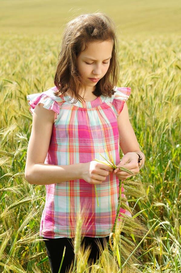 Download Junges Schönes Mädchen Auf Einem Gebiet Des Weizens Stockbild - Bild von landschaft, lebensstil: 26351915