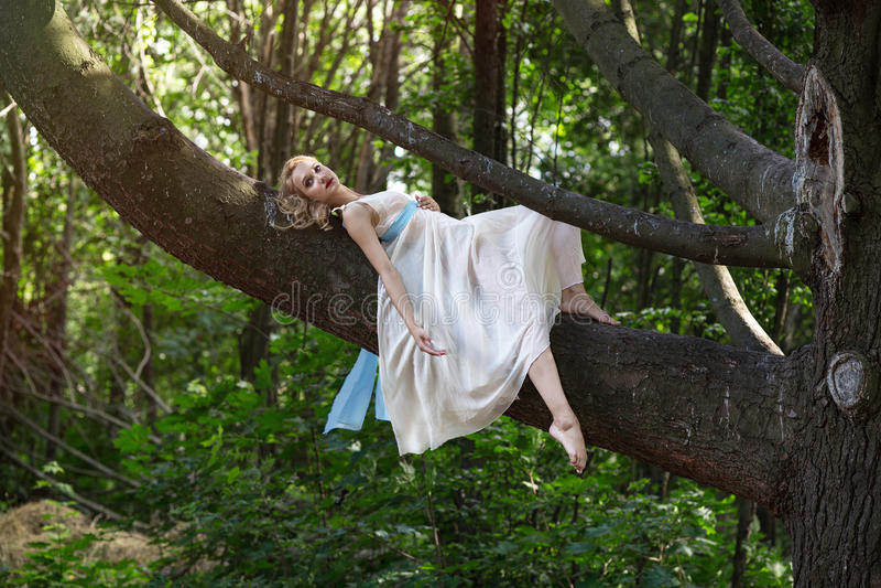 Junges schönes Mädchen, das auf einem großen Baum im Sommerpark liegt lizenzfreie stockfotografie