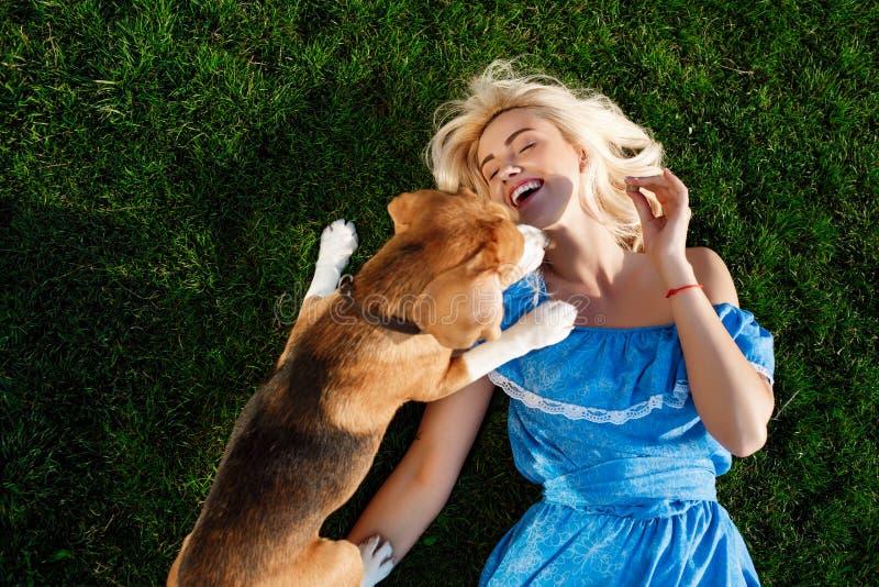 Junges schönes Mädchen, das mit Spürhundhund auf Gras im Park liegt stockbilder