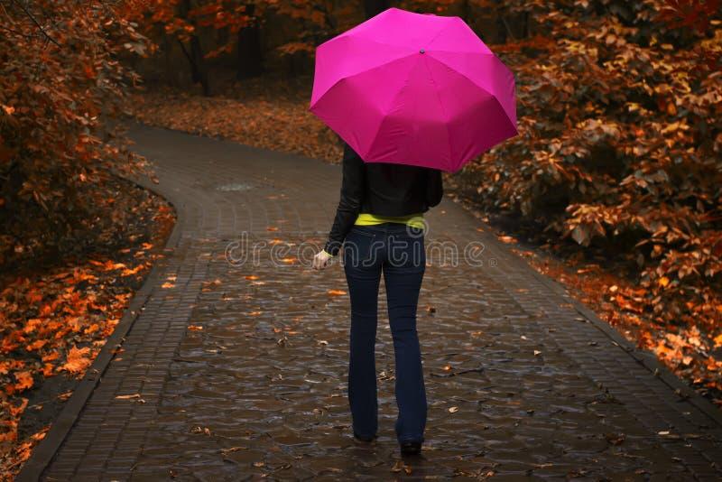 Junges schönes Mädchen im Regen geht mit dem rosa Regenschirm entlang der Gasse im Park im Herbst stockfotos