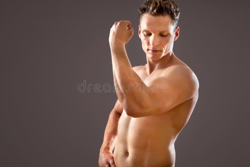 Junges und geeignetes männliches Modell stockfotografie