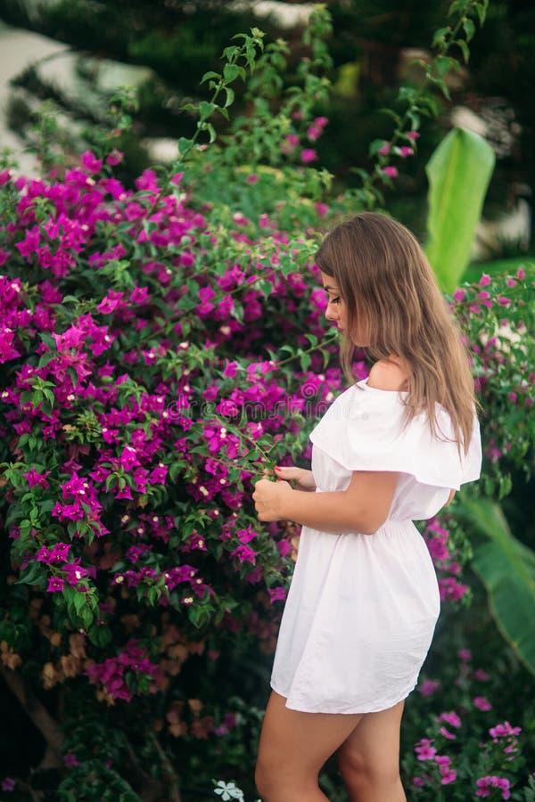 Junges und hübsches Mädchen in einer Sommerstadt, die nahe Blumen steht stockfotos