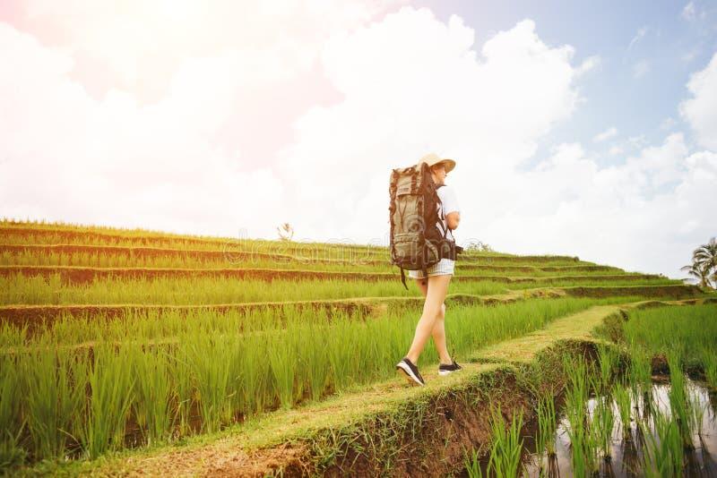 Junges und hübsches Mädchen mit dem Rucksack, der unter Reisterrassen reist stockfotografie