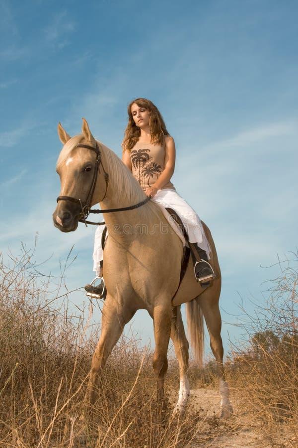 Junges weibliches Reiten auf Pferd stockfotos