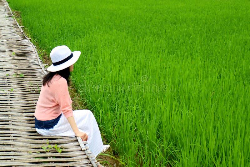 Junges weibliches Sitzen auf der Bambusbrücke auf vibrierendem grünem Paddy Field in Thailand stockfoto