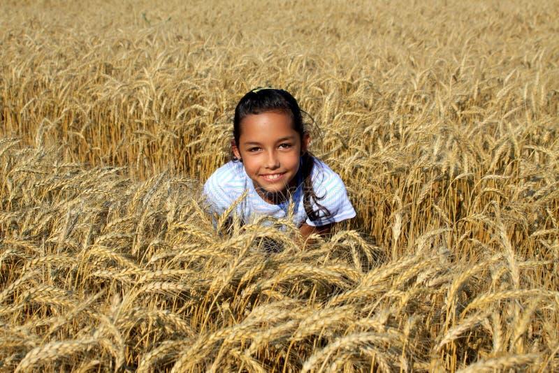 Junges Zigeunermädchen auf einem Kornfeld stockfotos