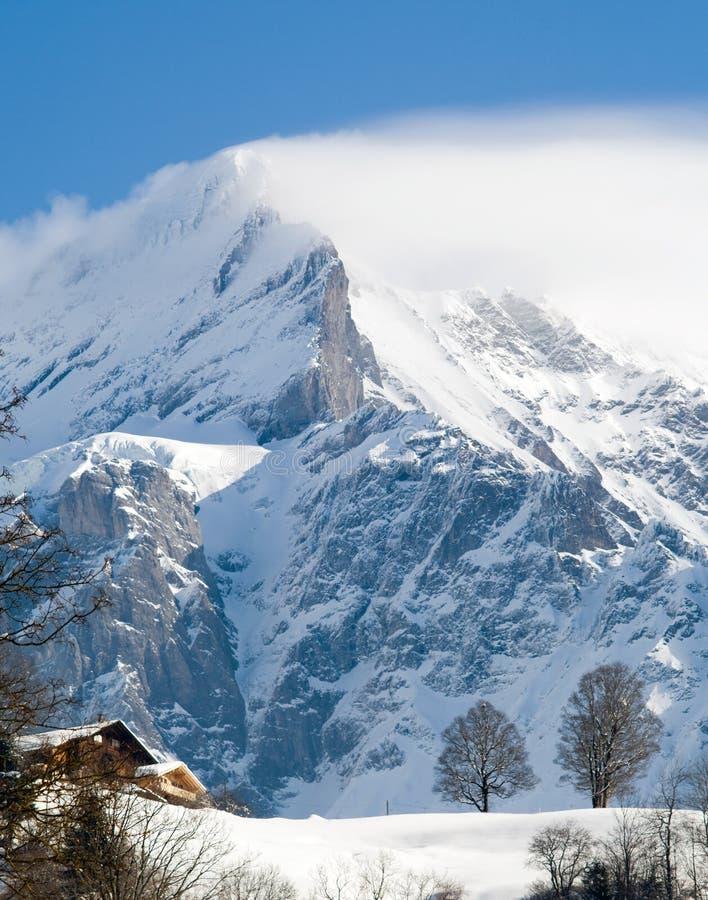 jungfrau -欧洲上面山顶全景  库存图片