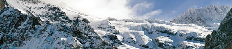 jungfrau -欧洲上面山顶全景  免版税图库摄影