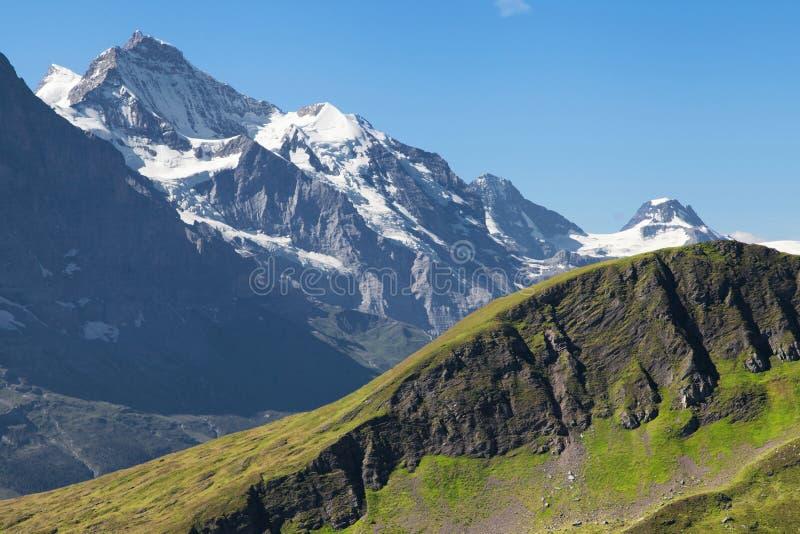 Jungfrau stock foto's