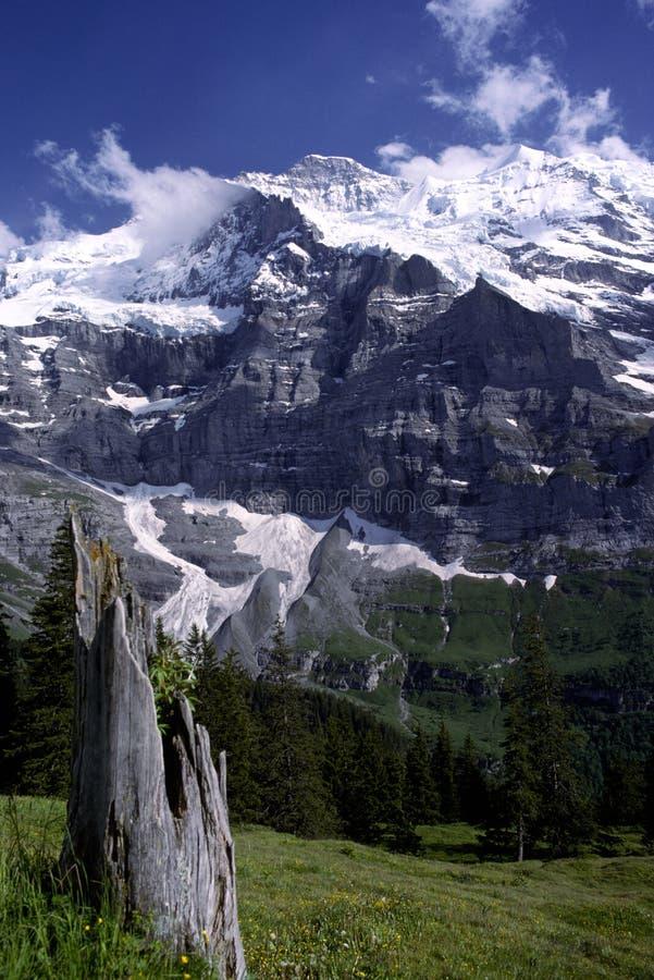 Jungfrau, die Schweiz stockfotografie