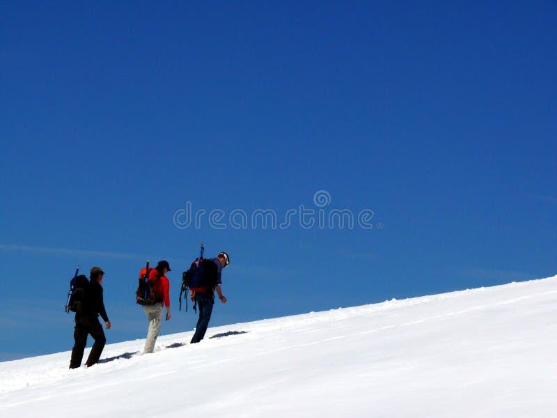 Jungfrau, Switzerland 08/06/2009 Povos em fugas da neve foto de stock royalty free