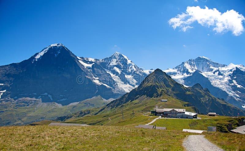 Jungfraugebied stock fotografie
