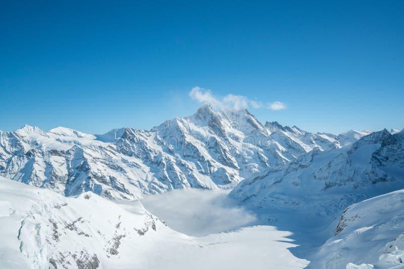 Jungfraujoch, Teil Schweizer Alpen-alpine Schnee-Berglandschaft Jungfrau in der Schweiz auf Sonnenlicht mit Wolken - Spitzeno stockfotografie