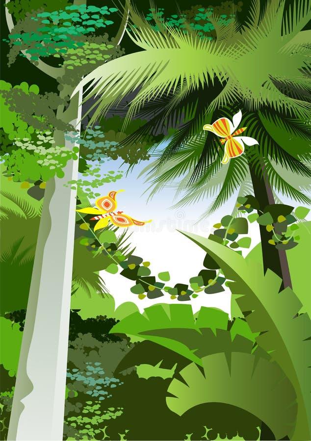 Download Jungle stock vector. Image of fern, oxygen, safari, jungle - 17731470