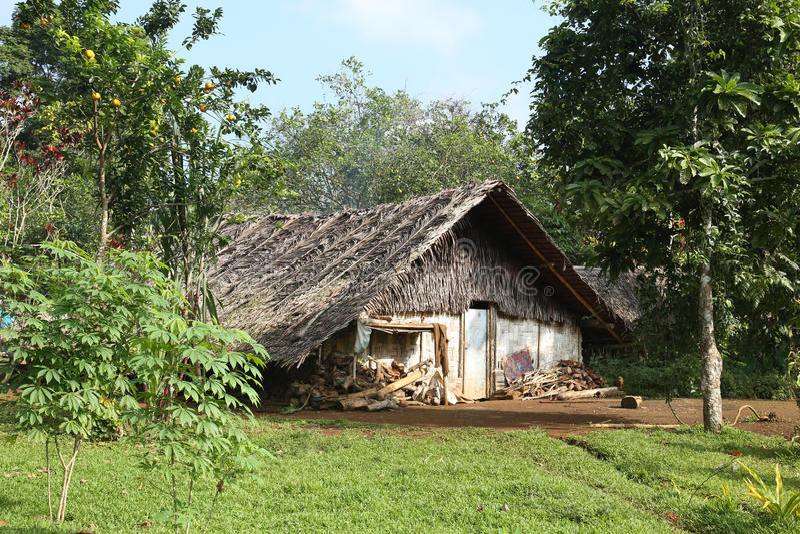 Jungle Bungalow. Traditional Jungle Bungalow in Vanuatu stock photos