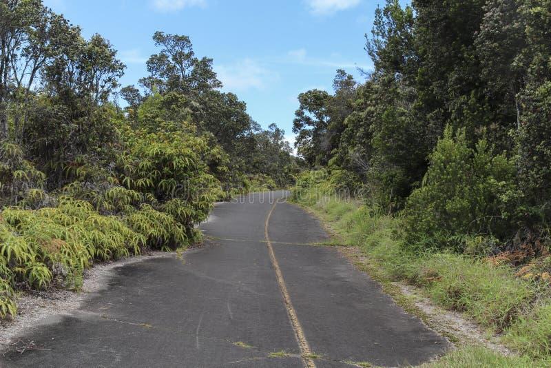 Jungle crater rim road, Kilauea, Big Island, Hawaii. Jungle crater rim road evoking adventure and exploration, Kilauea crater, Big Island, Hawaii royalty free stock image
