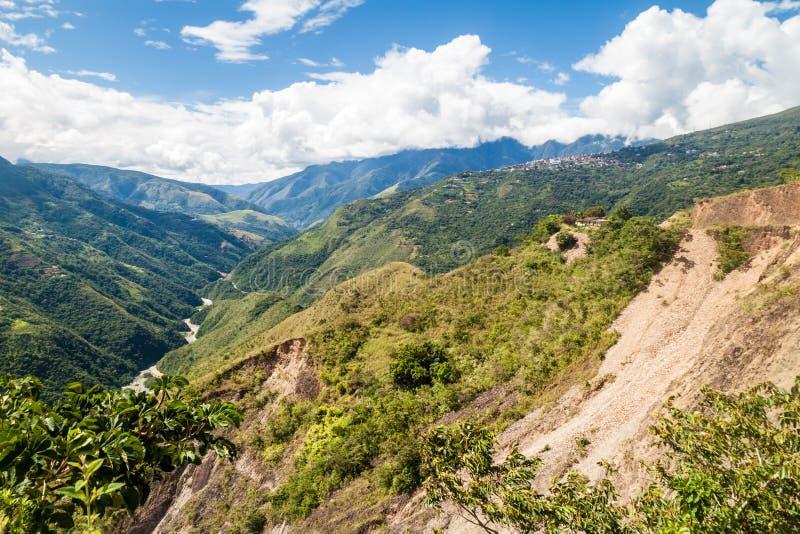 Jungle dense en montagnes de Yungas photo stock