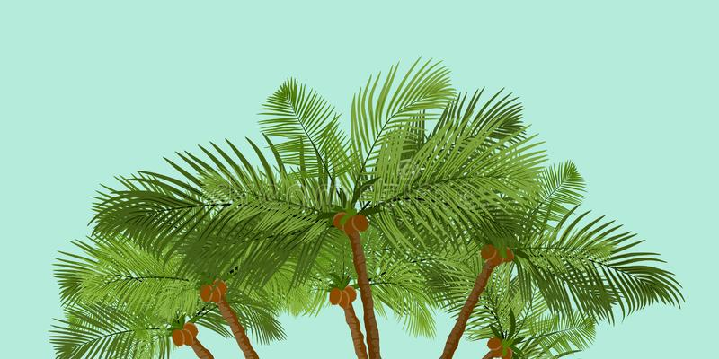 Jungle exotic composition. Vector banner wirh palm trees. Banners with palm. Jungle exotic composition with Palm trees. Vector EPS10 stock illustration