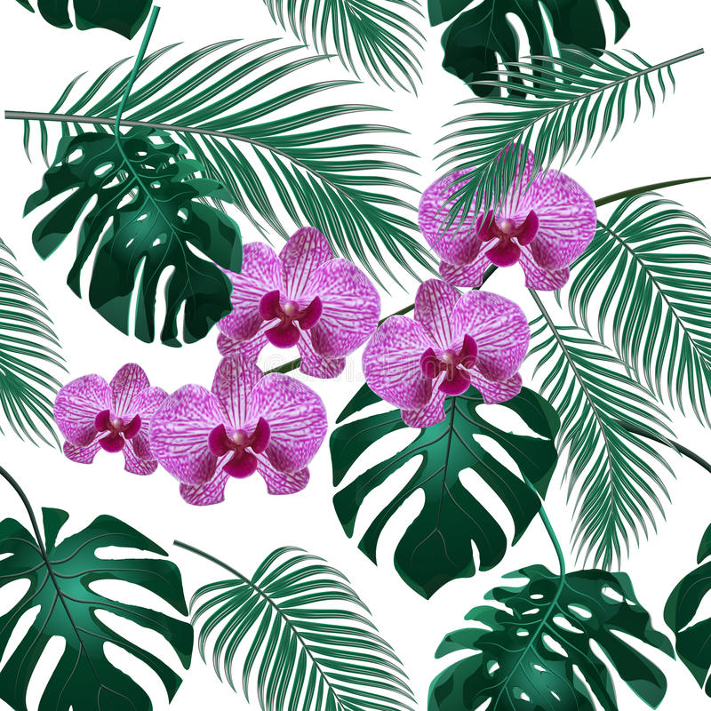 Jungle. Green tropical leaf, orchid flowers and palm leaves. Seamless floral pattern. on white background stock illustration
