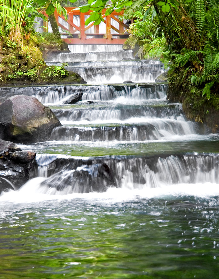 Jungle Hotsprings -3 royalty free stock photography