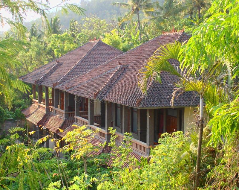 Jungle hut royalty free stock photo