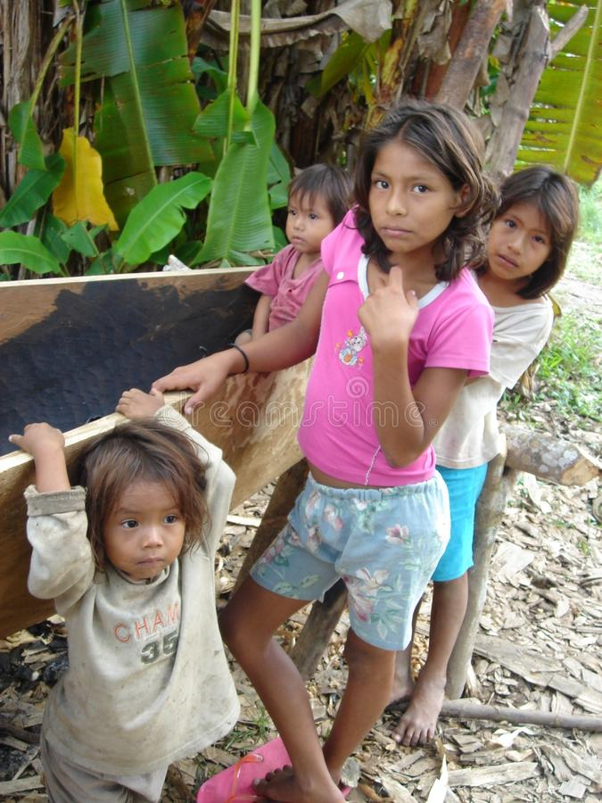 Jungle Kids. Some kids helping their dad build a dug out canoe in the amazon stock photo