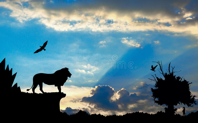 Jungle with mountains, old tree, birds lion and meerkat on blue cloudy sunset royalty free stock images