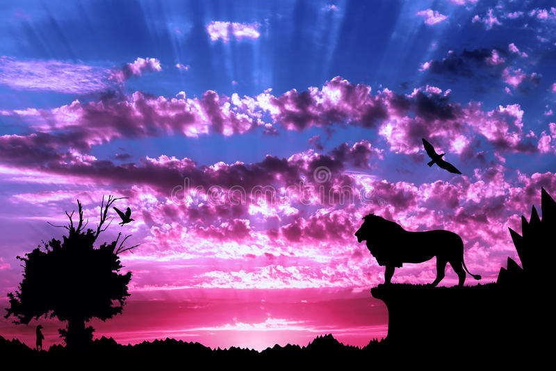 Jungle with mountains, old tree, birds lion and meerkat on purple cloudy sunset stock photography