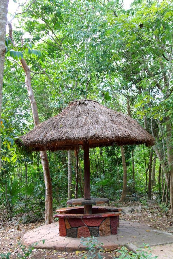 Download Jungle Palapa Hut Sunroof In Mexico Mayan Riviera Stock Photo - Image: 20981334