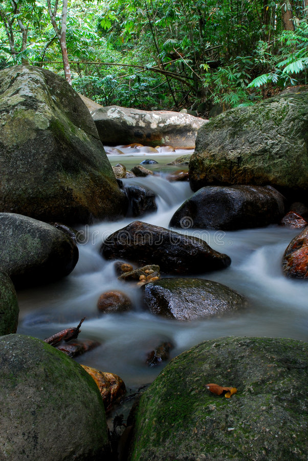 Download Jungle river stock image. Image of view, quiet, scenery - 2268807