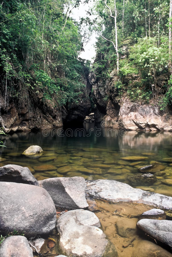 Jungle river, Thailand. Jungle river in the Khao Sok national Park, Thailand stock photos