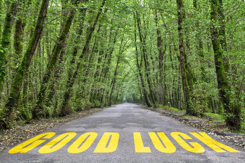 Jungle road to good luck. Good luck word written on jungle road with tall tree two side, green road royalty free stock image
