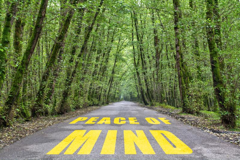 Jungle road to peace of mind stock photos