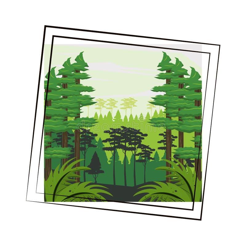 Jungle scenery cartoon. Jungle scenery landscape cartoon round frame vector illustration graphic design royalty free illustration