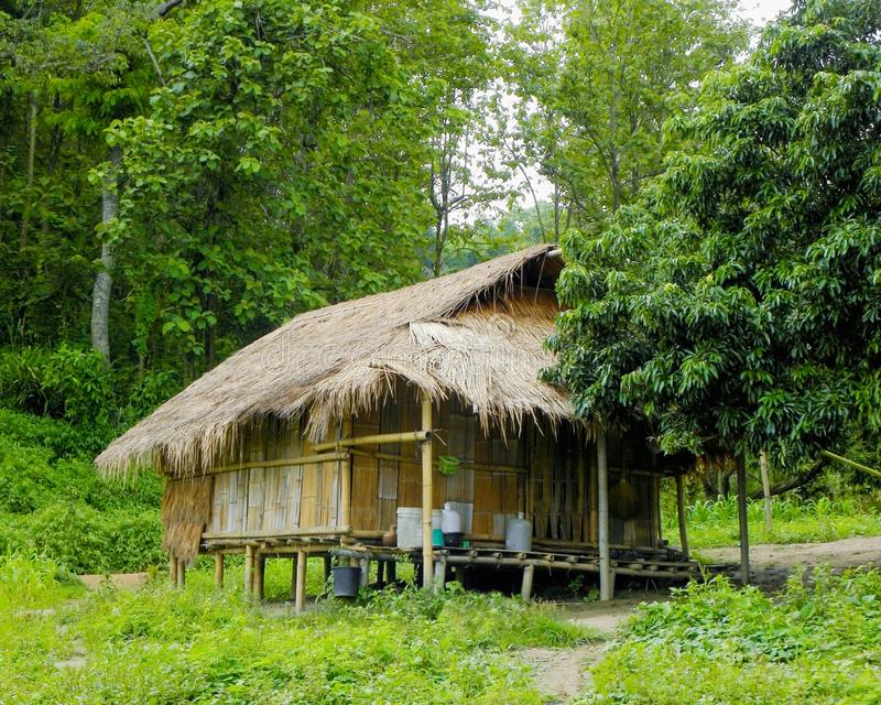June 2011 - Chang Rai, Thailand - A jungle setting grass shack deep in the northern region of Thailand stock photos