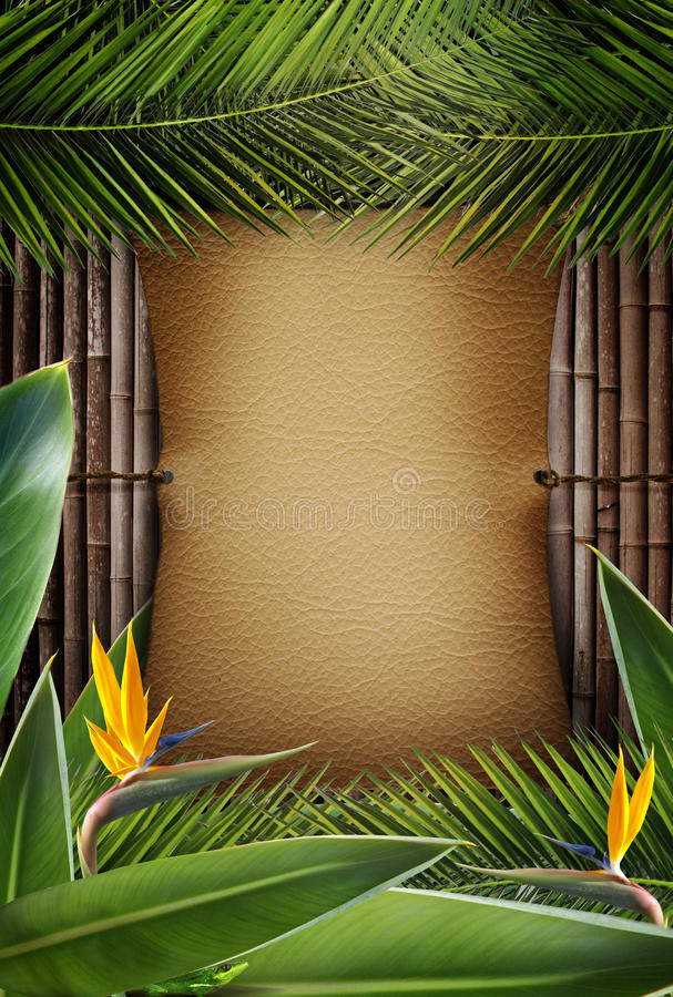 Download Jungle sign stock image. Image of fence, lush, tropical - 20554977