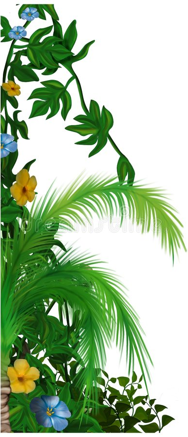 Jungle vegetation royalty free illustration