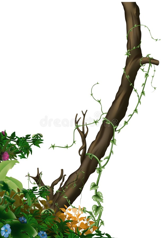 Jungle vegetation stock illustration
