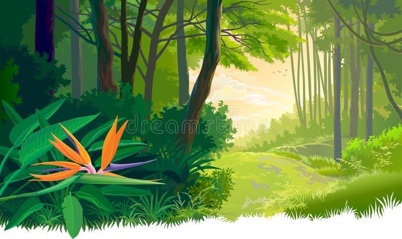 Jungle verte et dense épaisse illustration stock