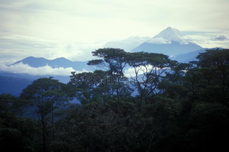 Jungle Volcano Landscape royalty free stock image