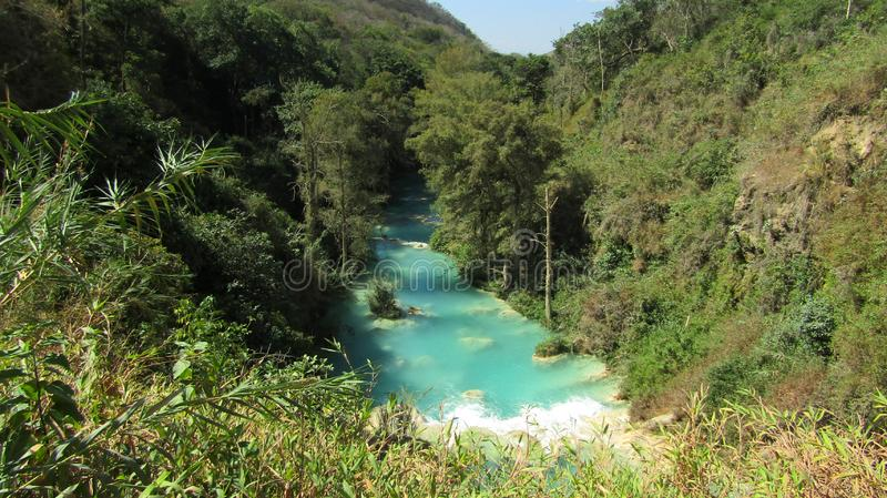 Jungle water. Bluewater view green trees mexico landscape stock image