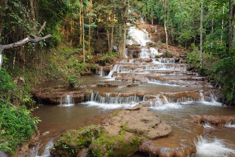 Download Jungle and waterfall stock photo. Image of flowing, cascade - 28393502