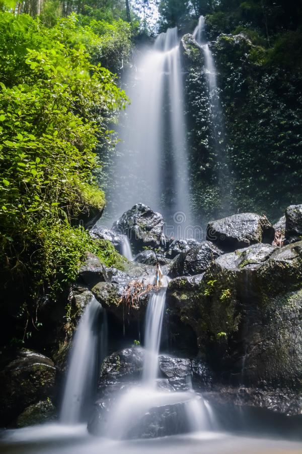 Jungle waterfall cascade in tropical rainforest with rock and turquoise blue pond. stock images