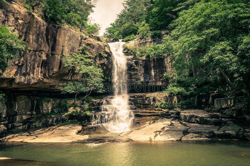 Jungle Waterfall stock images