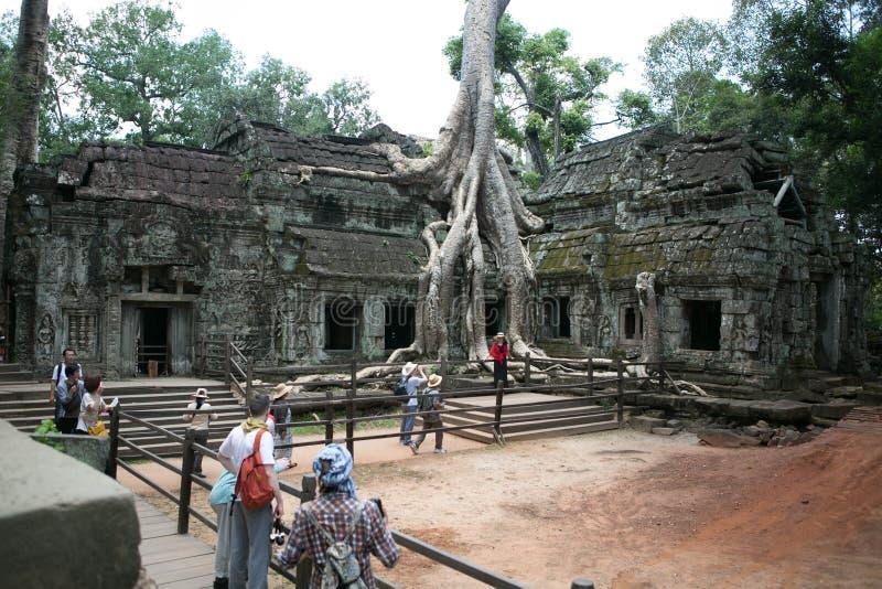 Jungles de temples de Combodia photographie stock