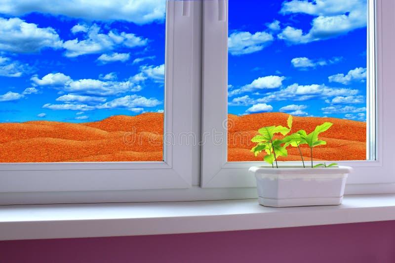 Jungpflanzen im Blumentopf auf dem Fensterbrett und Ansicht zur Wüste und zum bewölkten Himmel lizenzfreie stockfotos