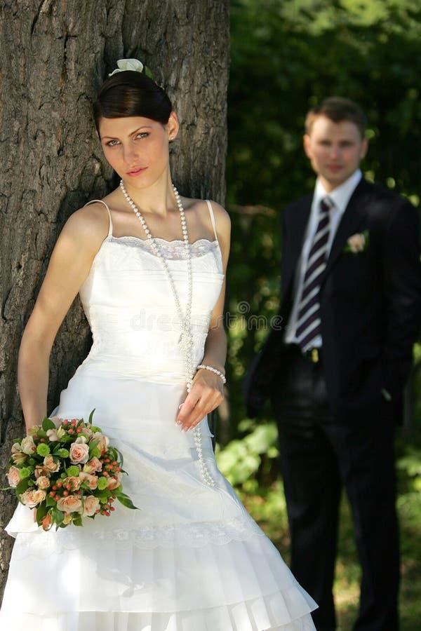Jungvermählten im Wald stockfotos