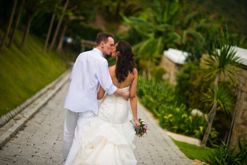 Jungvermählten küssen auf der Gasse im Sommer, zurück zu der Kamera lizenzfreie stockfotografie