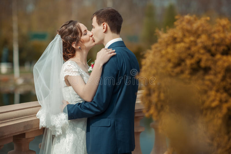Jungvermählten küssen in einem Park lizenzfreies stockbild